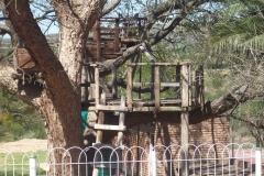 Middleton TreeHouse